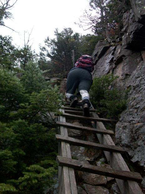 Climbing Sketchy Ladder